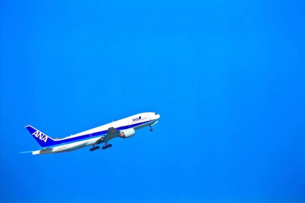 羽田空港全日空飛行機格納庫